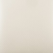 Embossed Shimmer Paper 5 Pack by Recollections, Champagne