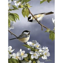 Reeves Paint by Numbers Artists Collection, Spring Chickadee