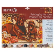 Reeves Large Paint by Numbers, Resting Labrador