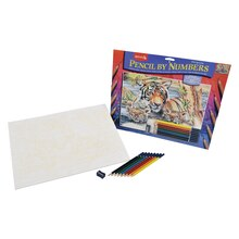 Reeves Large Color Pencil by Number, Tiger and Cubs