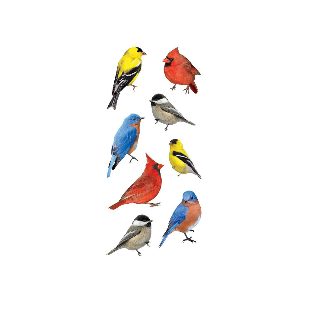 buy the paper house stickers backyard birds at michaels