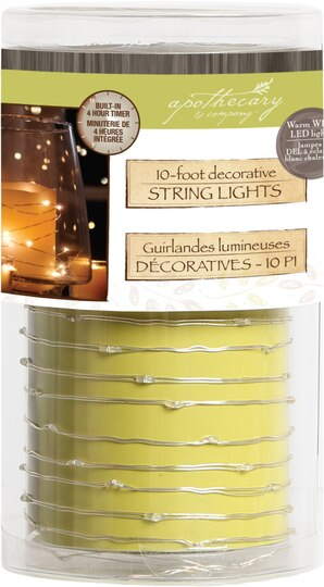 Find The Apothecary Company Decorative String Light With Timer