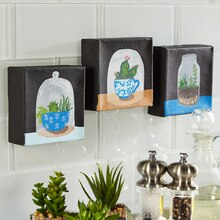 Terrarium Mini Canvas Trio, medium