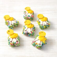 Chick Mini Cakes, medium