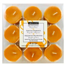 Ginger Citrus Scented Votives by Ashland Decor Scents