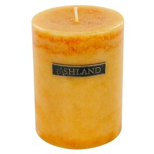 "3"" x 4"" Ginger Citrus Pillar Candle by Ashland Decor Scents"