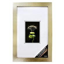 """Gallery Float Wall Frame With Double White Mat by Studio Décor, Champagne 5"""" x 7"""""""
