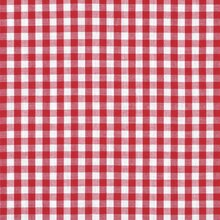 "1/4"" Red Gingham"