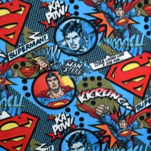DC Comics Superman A Job for Superman Fleece