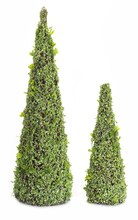 Cone Topiary with Leaves (Set of 2)
