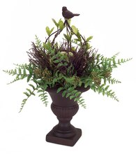 "19"" Fern Arrangement with Nest"