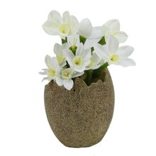 "4.5"" Decorative Paperwhite Silk Flowers Potted in Easter Egg"