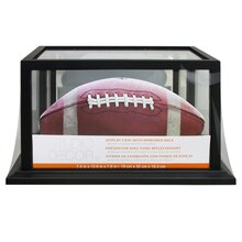 Studio Decor Display Case With Mirrored Back, Black