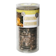 Apothecary & Company Silver Decorative Micro LED String Lights, 15 ft.