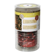 Apothecary & Company Red Decorative Micro LED String Lights, 10 ft.