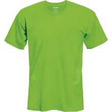 Gildan Short Sleeve Youth T-Shirt, Small, Lime