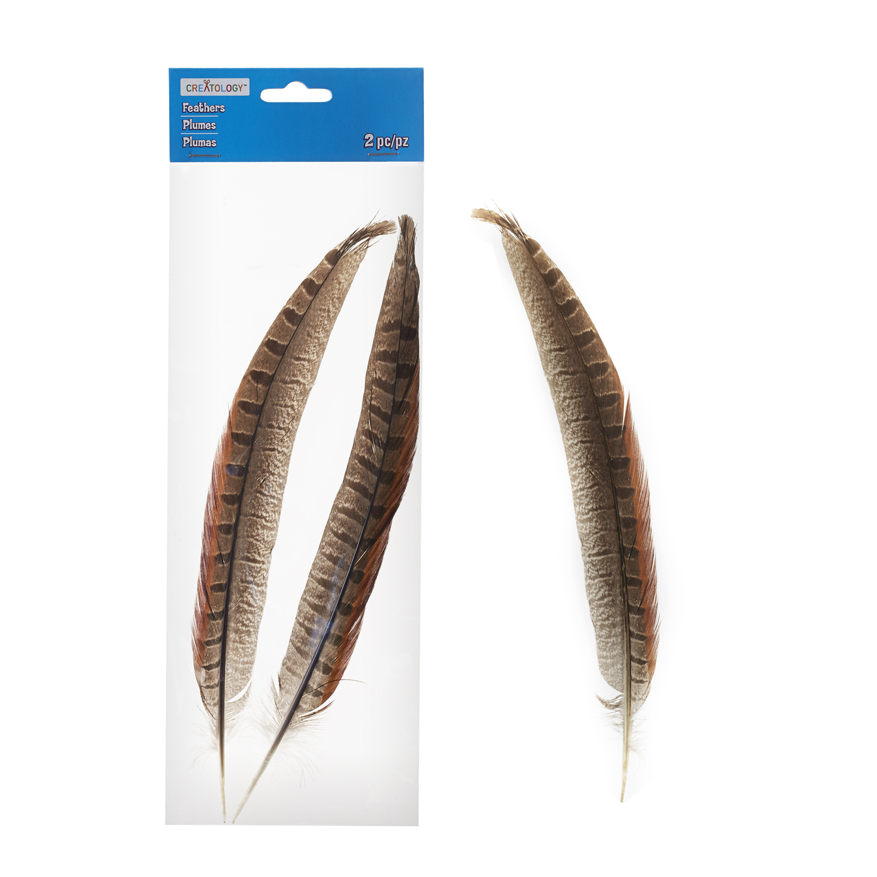 Brown Pheasant Feathers By Creatology ...