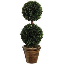 "18.5"" Preserved Boxwood Double Ball Topiary in Ceramic Pot"