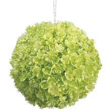 "5"" Viburnum Kissing Ball, Lime"