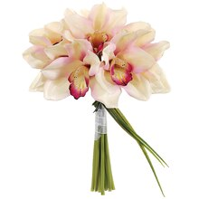 "10"" Cymbidium Orchid Bundle, Pink"