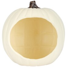 Cream Diorama Craft Pumpkin by Ashland
