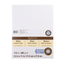 Recollections Heavyweight Cardstock Paper Value Pack, White