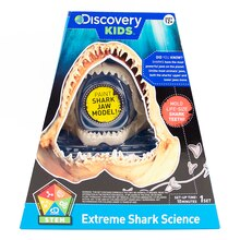 Discovery Kids Extreme Shark Science Mold & Paint Shark Kit