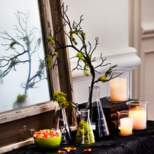 Chemistry Glass Flask Halloween Floral Branch Arrangement, medium