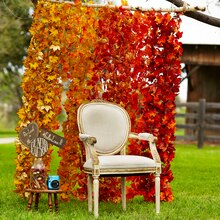 Fall Leaf Backdrop, medium