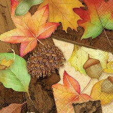 Woodland Fall Beverage Napkins, 16ct