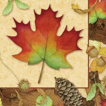 Woodland Fall Luncheon Napkins, 16ct