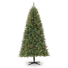 Celebrate It Pre-Lit Willow Pine Christmas Tree, Clear, 7 ft.