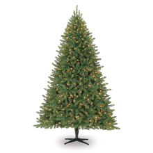 Celebrate It Pre-Lit Hartford Pine Christmas Tree, Clear, 7.5 ft.