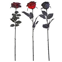 Rose Stems By Celebrate It