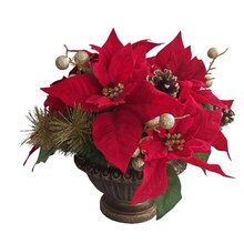 Red & Gold Mix Poinsettia By Ashland