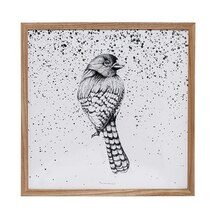 Bloomingville Square Wooden Framed Bird Wall Decor Accent