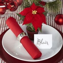 Classic Christmas Potted Place Setting, medium