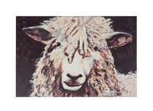 Michelle Foy Sulcate Sheep Wall Decor