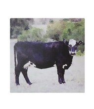 Craig Miller Black Cow Canvas Wall Decor