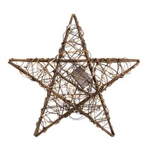 Twig Vine Star Accent by Apothecary & Company