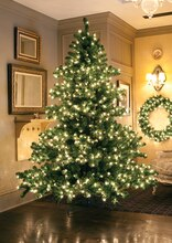 6.5 Ft. Pre-Lit Middleton Full Layered Artificial Christmas Tree, Clear Lights