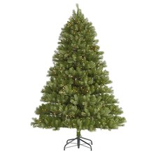 6.5 Ft. Pre-Lit Belvedere Spruce Artificial Christmas Tree, Clear LED Lights