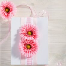 Pink Gerber Daisy Gift Wrap, medium