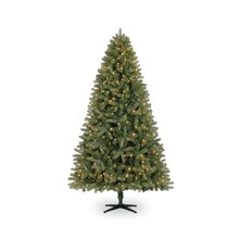 Pre-Lit 7.5 ft. Freemont Pine Quick Set Tree by Celebrate It