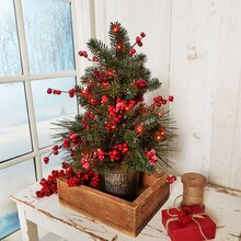Tabletop Berry Tree, medium