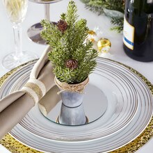 Shimmer Noel Potted Place Setting, medium