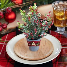 Pinecone Lodge Potted Place Setting, medium
