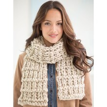 Lion Brand® Wool-Ease® Thick & Quick® Bonus Bundle High Plains Knit Scarf, medium