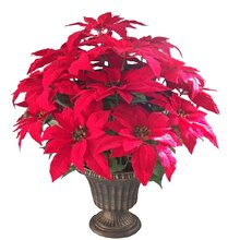 Deluxe Large Red Poinsettia Pot By Ashland