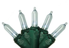 Set of 100 Pure White LED Mini Christmas Lights, Green Wire